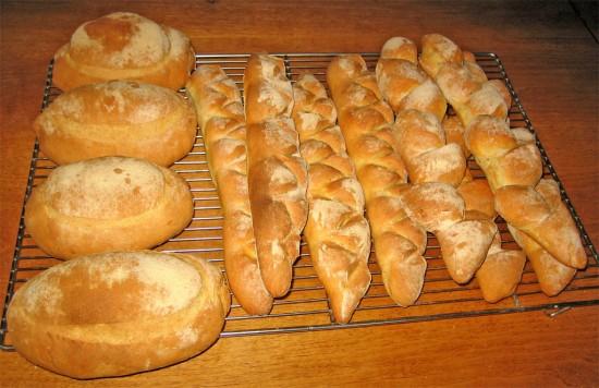 Pane realizzato con semola di grano Senatore Cappelli